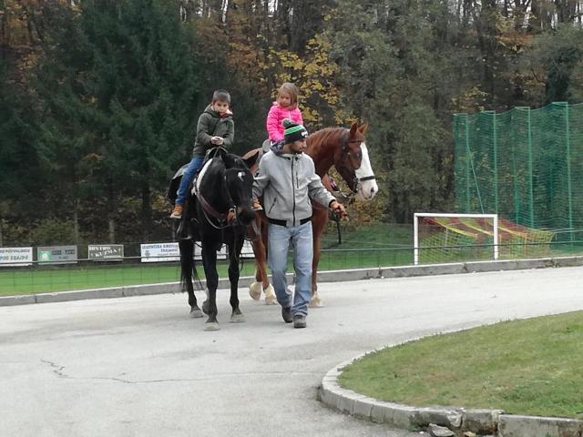 konji-10